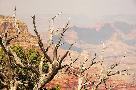 Grand Canyon by Paul Van Baardwijk