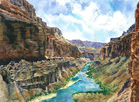 Grand Canyon River View Red Rocks watercolor by Barb Capeletti