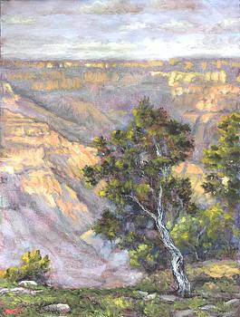 Grand Canyon South Rim at Sunset by Lynn T Bright