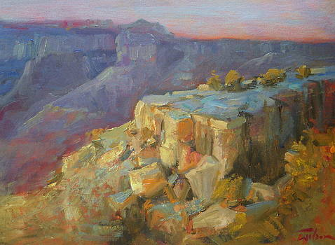 Grand Canyon South Rim by Ron Wilson