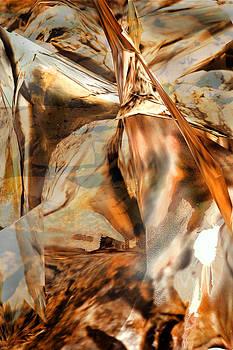 Grand Canyon Up Close and Personal by Judy Paleologos