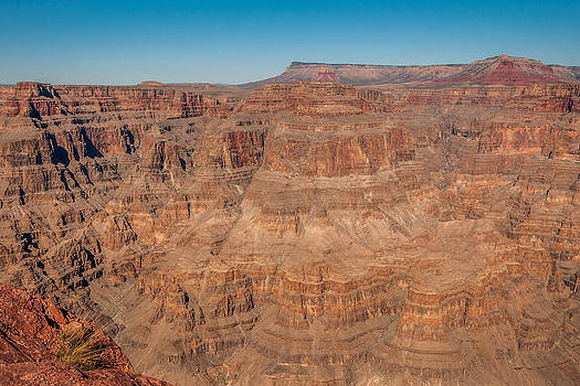 Grand Canyon View by Chris Holmes