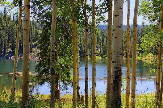 Bob Hislop - Grand Mesa Lake