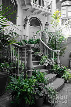 Tracey McQuain - Grand Staircase