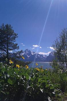 Grand Tetons by Margaret Zimmer
