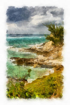 Grand Turk North Shore Vertical by Michael Flood