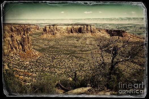 Jon Burch Photography - Grand View