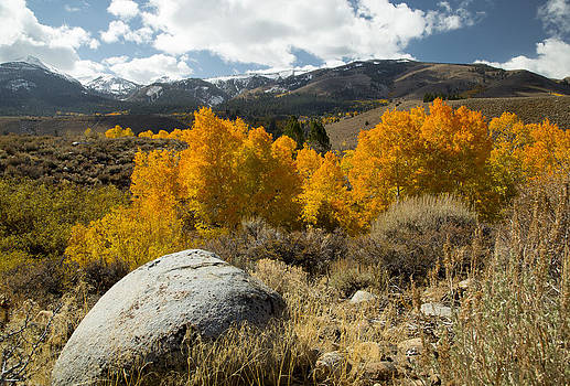Granite and Color by Jim Snyder