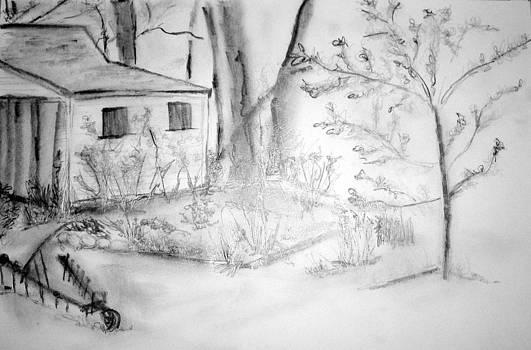Granpa's Backyard III by Helena Bebirian