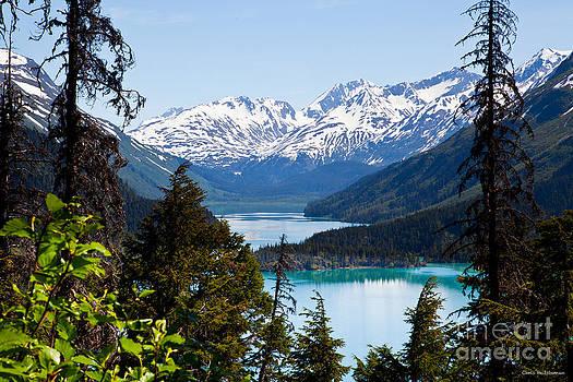 Grant Lake Overlook by Chris Heitstuman