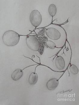 Grapes by Isabel Honkonen