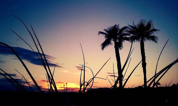 Grass by Santana Wilson