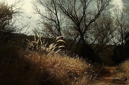 Karen Slagle - Grasses of Winter