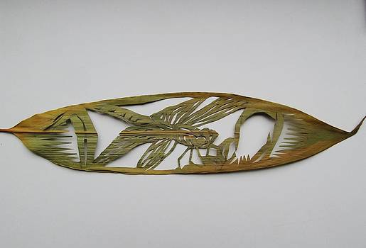 Alfred Ng - grasshopper on bamboo leaf