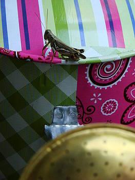 Grasshopper on watering can by Kelli Uysaloglu