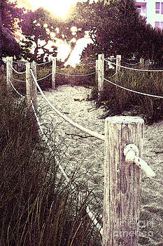 Grassy Beach Post Entrance at Sunset by Janis Lee Colon