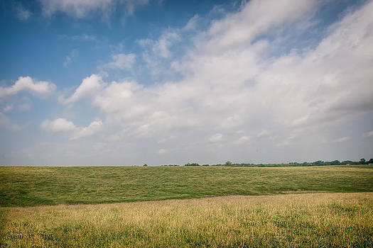 Grassy field by Clay Swatzell