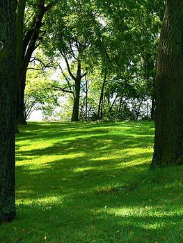 Grassy Park by Lindsay Stone