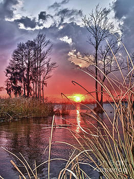 Grassy View Sunset by Mike Covington