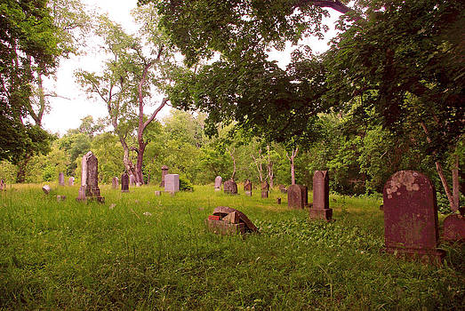 Graveyard 3 by Joyce  Wasser