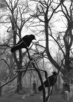 Gothicrow Images - Graveyard Blackbirds