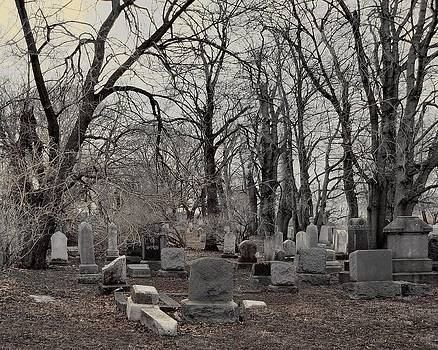 Gothicrow Images - Gray Graveyard Trees