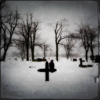 Gothicrow Images - Gray Winter