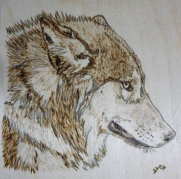 Gray Wolf Pyrographic Wood Burn Original 5.75 x 5.75 inch Art Panel by Shannon Ivins