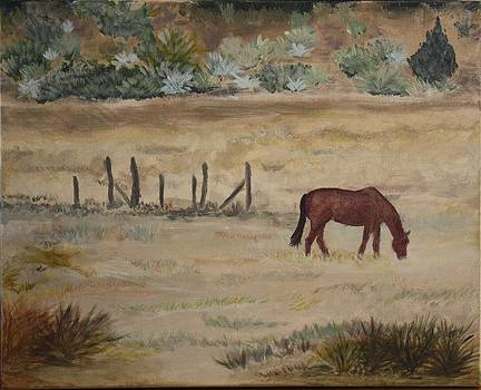 Grazing Horse by Tami Rounsaville