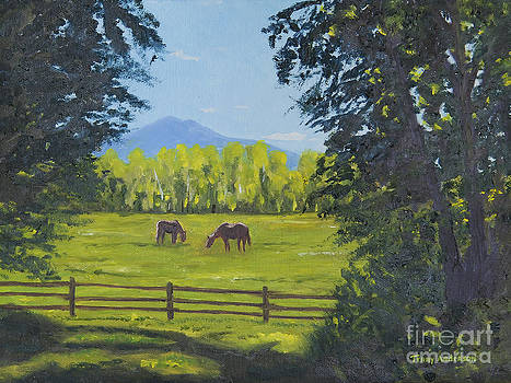 Grazing in the Grass by Terry Anderson