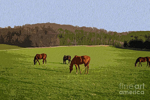Grazing by Joe McCormack Jr