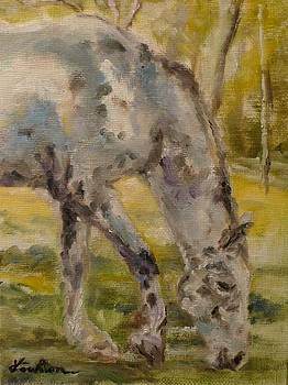 Grazing by Veronica Coulston