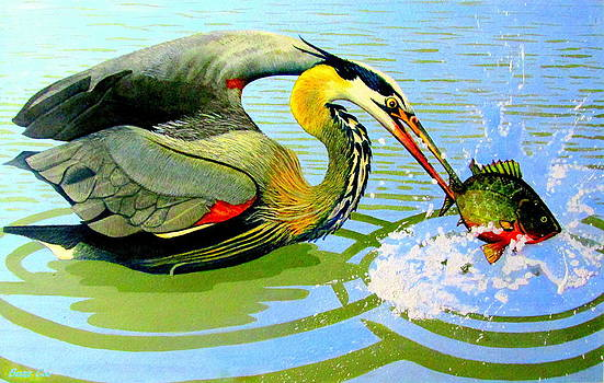 Buzz Coe - Great Blue Heron and Sunfish
