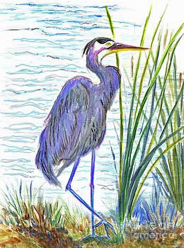 Ellen Miffitt - Great Blue Heron