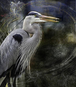 Ludmila Nayvelt - Great Blue Heron
