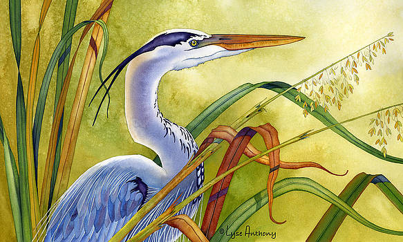 Great Blue Heron by Lyse Anthony