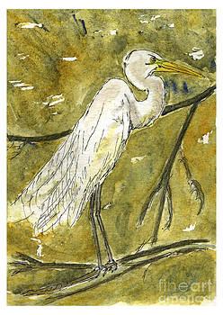 Great Egret by Andrea Rubinstein