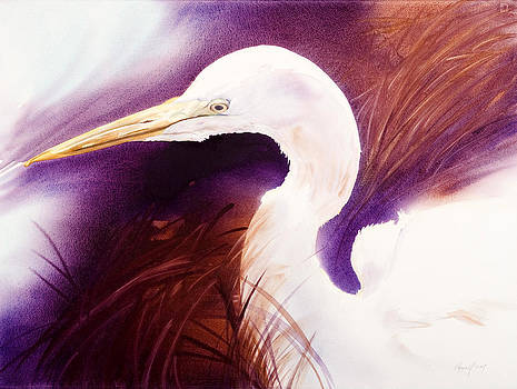 Great Egret by Kitty Harvill