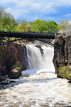 Regina Geoghan - The Great Falls in Spring