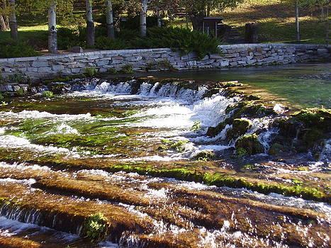 Great Falls MT by Yvette Pichette