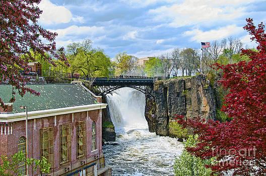 Regina Geoghan - Great Falls Park NJ-Spring Scene