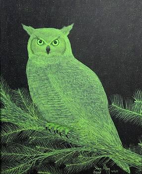 Great Horned Owl by Doug Miller