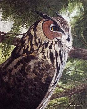 Great Horned Owl by Ken Everett