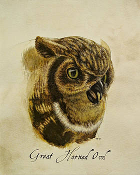 Great Horned Owl by Rachel Root