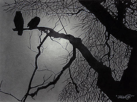 Great Horned Owl by Tim Dangaran