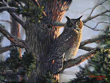 Great Horned Owl by Valentin Katrandzhiev
