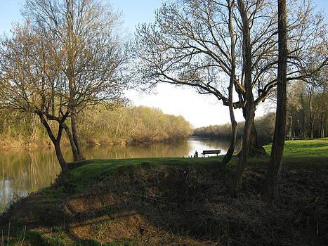 Great Pee Dee River 1 by Gloria Turner