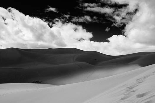 Great Sand Dunes by D Scott Clark