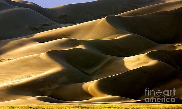 Douglas Taylor - GREAT SAND DUNES IN GOLDEN LIGHT