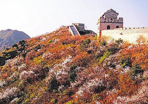 Dennis Cox ChinaStock - Great Wall in Springtime